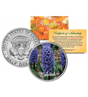 HYACINTH FLOWER JFK Kennedy Half Dollar U.S. Colorized Coin