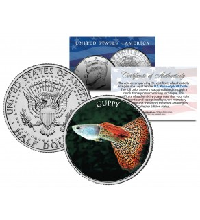 GUPPY - Tropical Fish Series - JFK Kennedy Half Dollar U.S. Colorized Coin