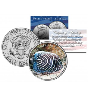 JUVENILE EMPEROR ANGELFISH  - Tropical Fish Series - JFK Kennedy Half Dollar U.S. Colorized Coin