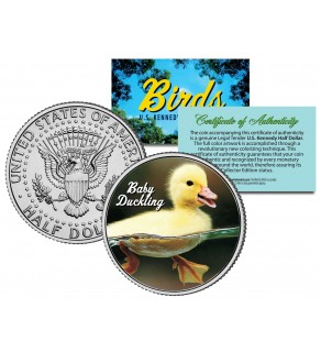 BABY DUCKLING Collectible Birds JFK Kennedy Half Dollar US Colorized Coin DUCK