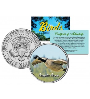 CANADA GOOSE Collectible Birds JFK Kennedy Half Dollar Colorized U.S. Coin