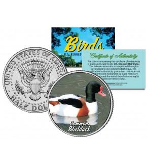 COMMON SHELDUCK Collectible Birds JFK Kennedy Half Dollar Colorized US Coin