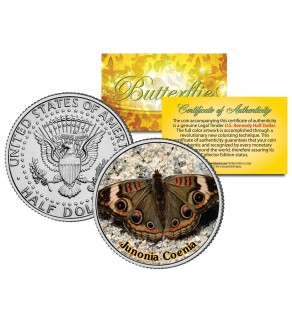 JUNONIA COENIA BUTTERFLY JFK Kennedy Half Dollar U.S. Colorized Coin