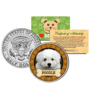 POODLE Dog JFK Kennedy Half Dollar U.S. Colorized Coin