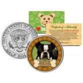 BOSTON TERRIER Dog JFK Kennedy Half Dollar U.S. Colorized Coin