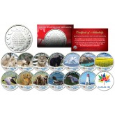 CANADA 150 ANNIVERSARY RCM Royal Canadian Mint Colorized Medallions WILDLIFE Set of 14