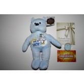 IT'S A BOY Plush Bear & It's a Boy JFK Kennedy Half Dollar Colorized US Coin