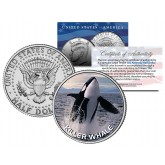KILLER WHALE JFK Kennedy Half Dollar US Colorized Coin